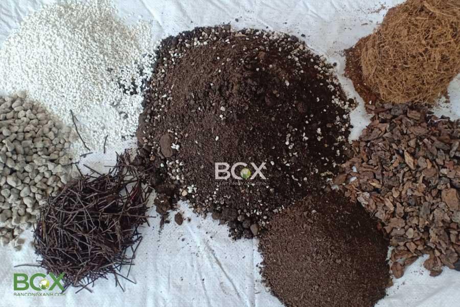 Nguyên liệu trộn đất trồng monstera