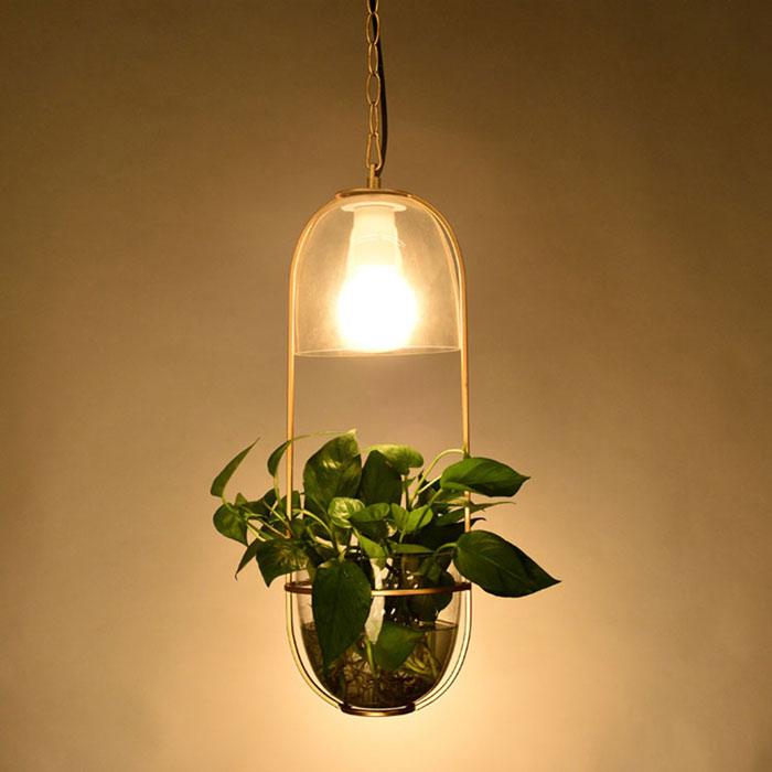 đèn trồng cây