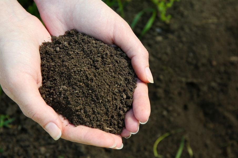 Vậy nếu đất không thẳng thì phải dùng loại nào?