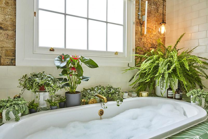 khu vườn trong nhà tắm